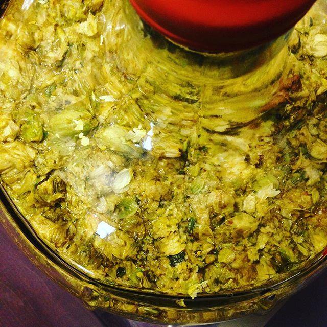 Dry hop brew #beer #brewing #beerbrewing #hoppybeer #hops
