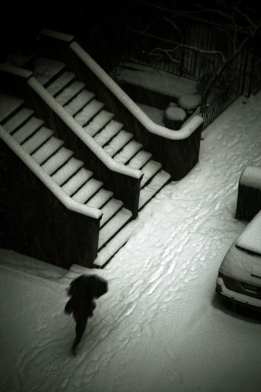 02_Marco-Phil_Snow-Steps.jpg
