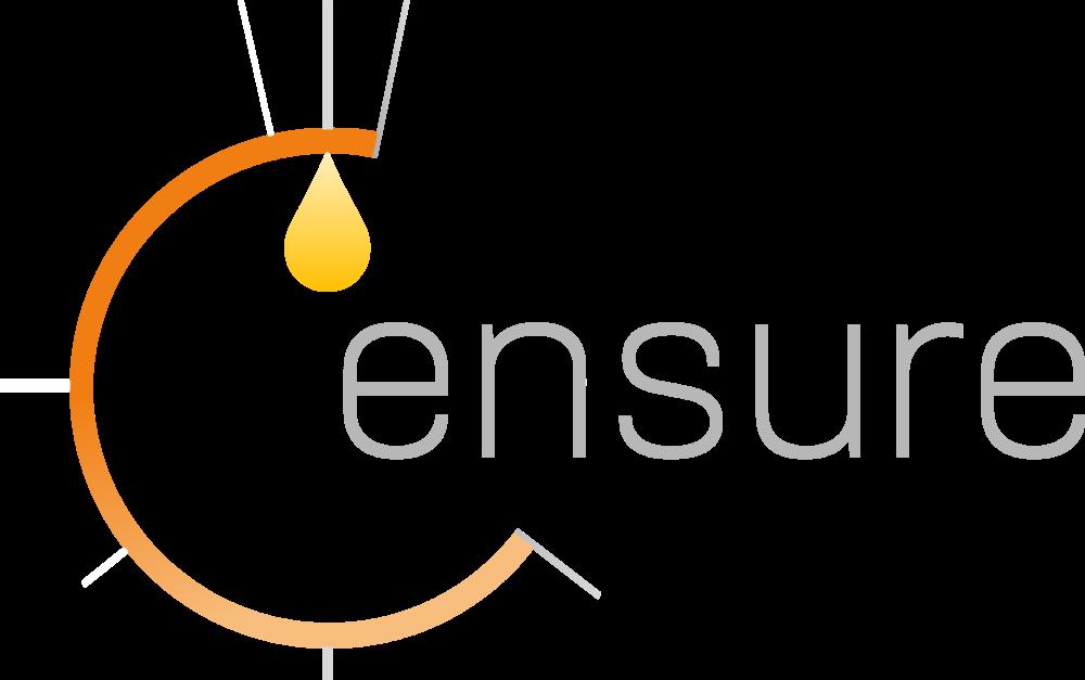 Ensure Logo - Ensure Page.png