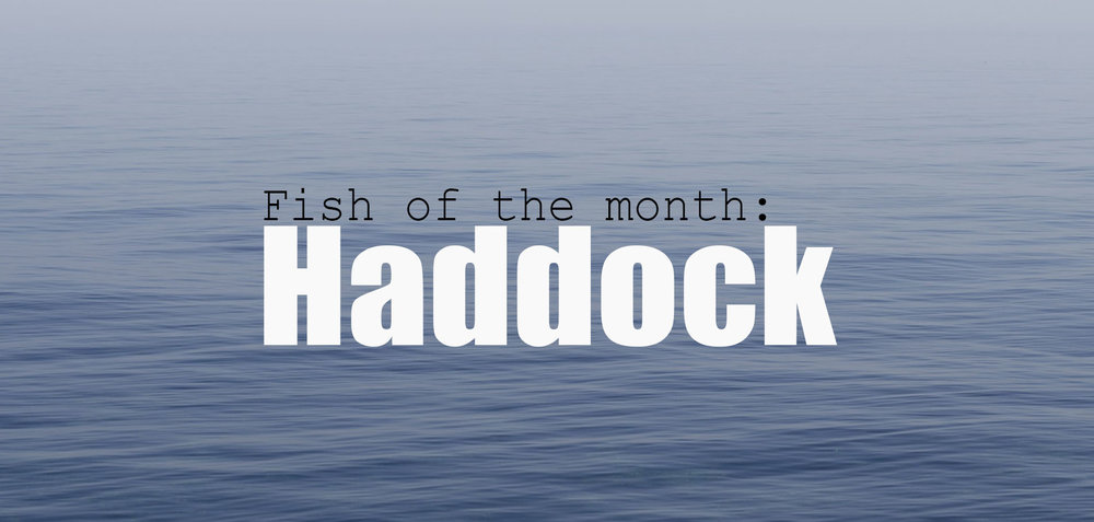 fisheries March blog image.jpg
