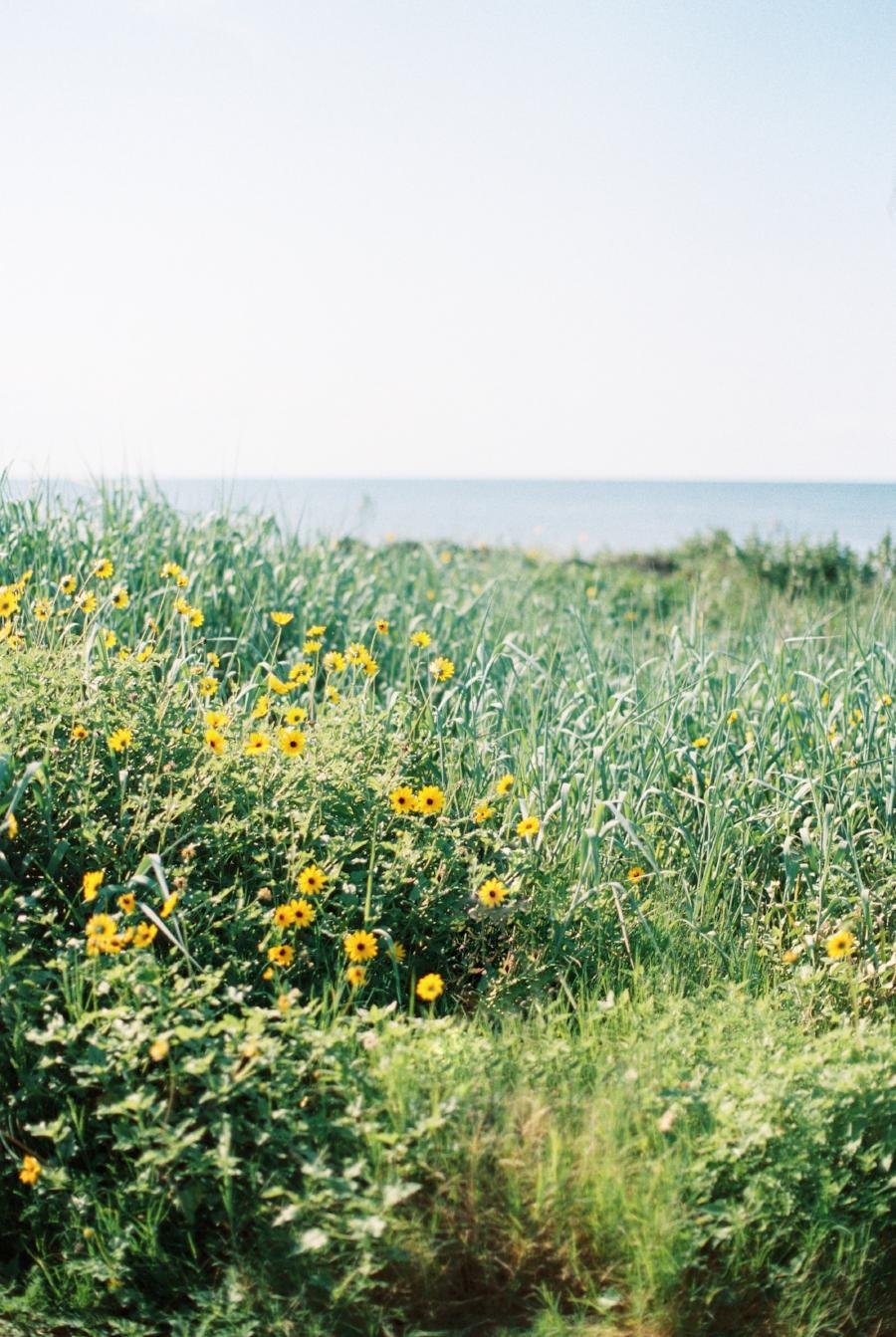 24-Galveston.JPG