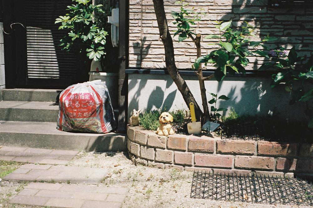 25 May 2015 Kasuga Post-Breakfast