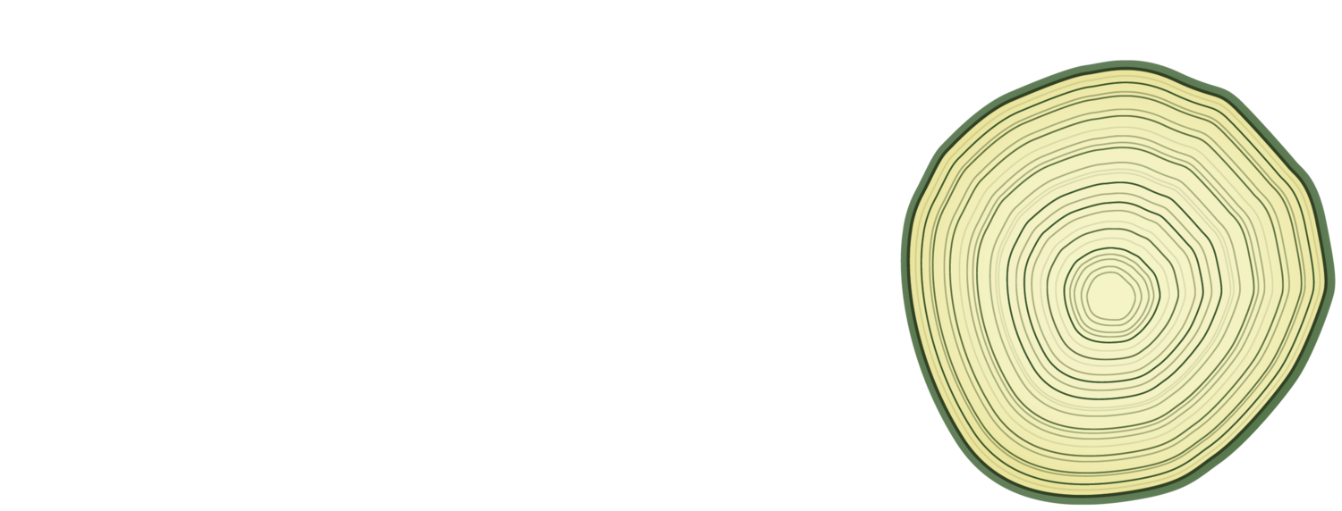Machaqmara Center for the Arts