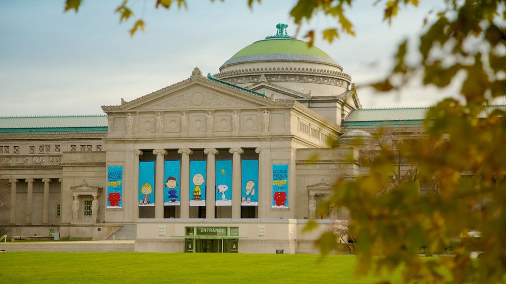 Museum of Science and Industry  | Outdoor Entrance Banners