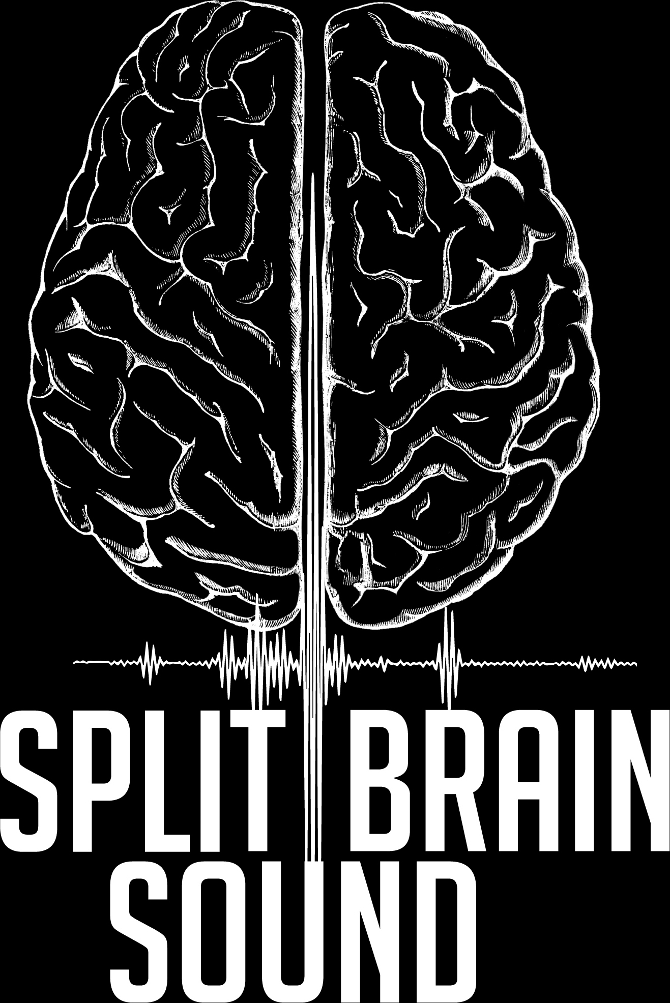 Split Brain Sound