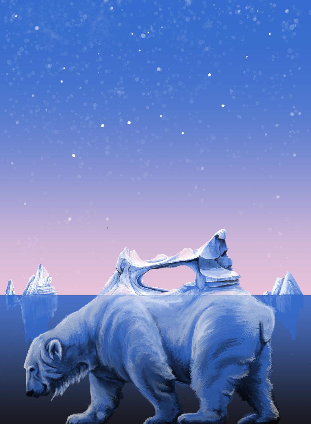 sketches_polar bear.jpg