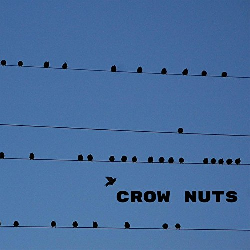 "CROW NUTS 2015  w/ jb, Tim Lefebvre, Tim Young, Louis Cole also feat. Daniel Rosenboom, David Ralicke, Alex Budman. recorded/mixed by John Paterno. see ""buy Crow Nuts on vinyl"" on this website to purchase."