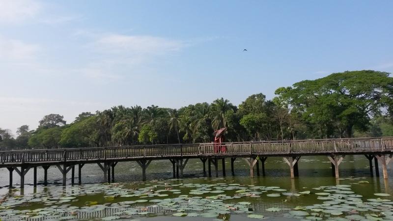 Mönche spazieren über eine Parkbrücke - toll!