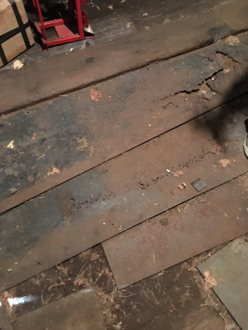 barn floor.jpg