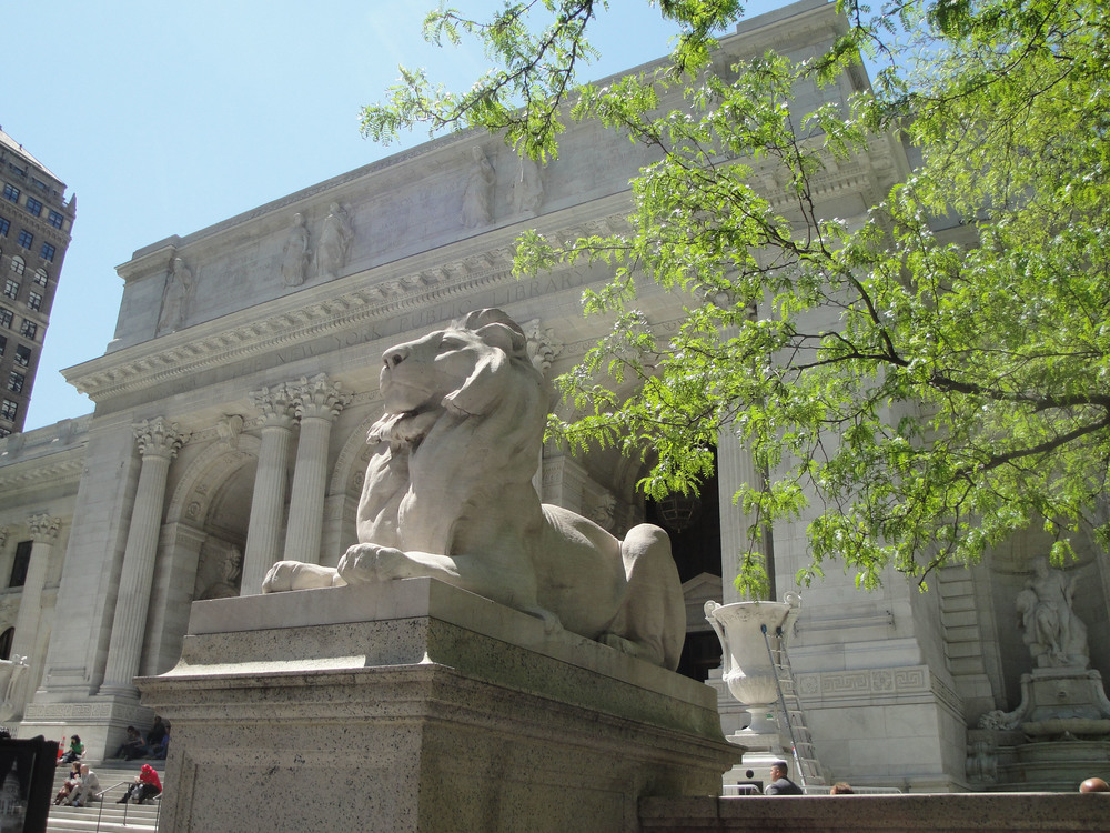 New_York_Public_Library_Lion_May_2011.JPG