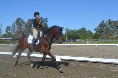 COURTESY // SSU Equestrian The equestrian team competed in Nationals last year.