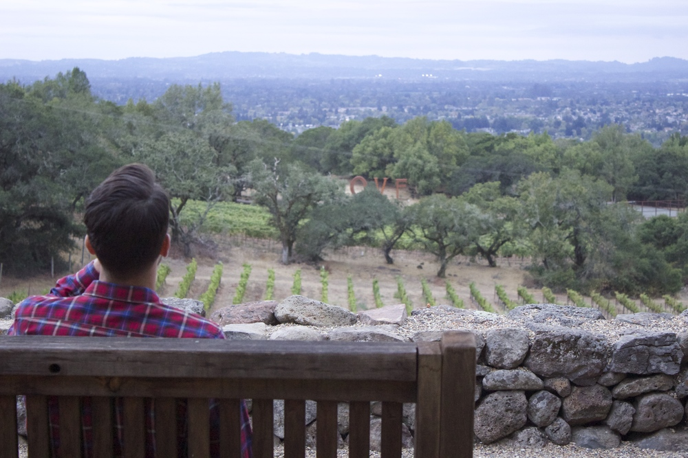 STAR // Jenna Fischer In Santa Rosa, Paradise Ridge Winery features an event on Wednesdays for customers to watch the sunset with delicious wine and food.