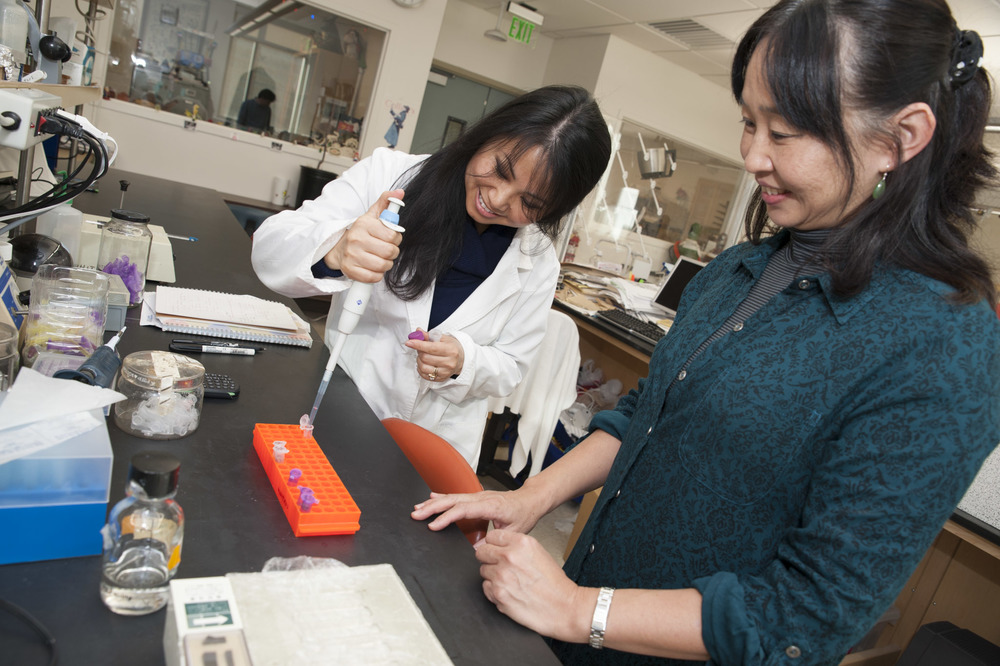 STAR // Connor Gibson Professional Researcher Mami Kainuma (left) samples water with biology student Fujun Bernie.