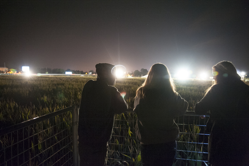 STAR // Connor Gibson Students gaze over the corn maze in the Petaluma Pumpkin Patch.
