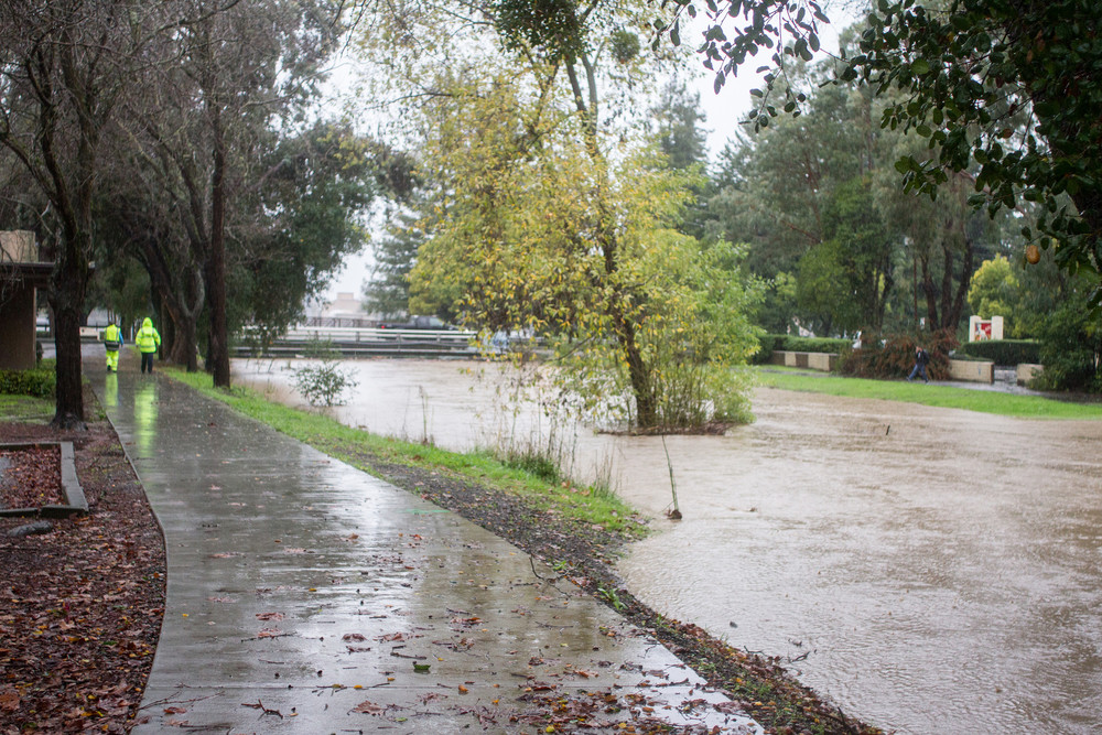 STAR // Gustavo Vasquez The Copeland Creek trail in Rohnert Park is flooded resulting from the storm in the Bay Area yesterday and today.