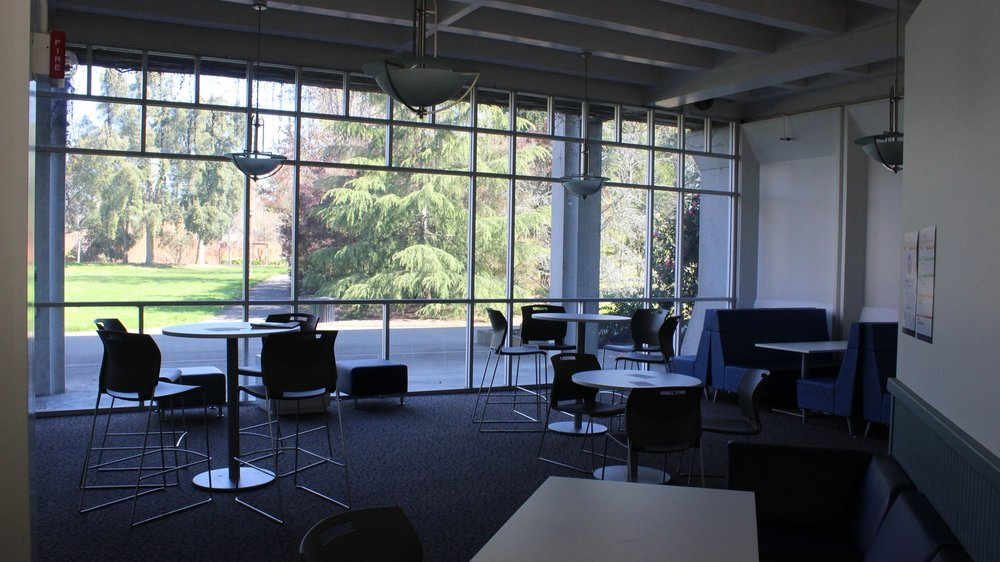 STAR // Christine von Raesfeld   The study room on the first floor of Stevenson on the North side of the building next to the School of Education.