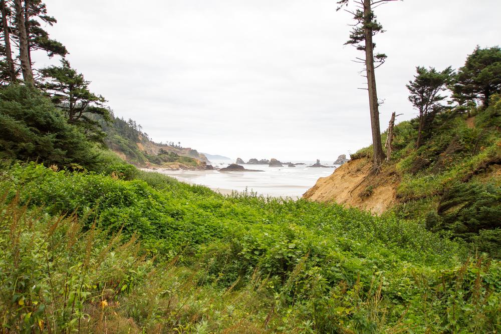 Oregon_2015-0053.jpg