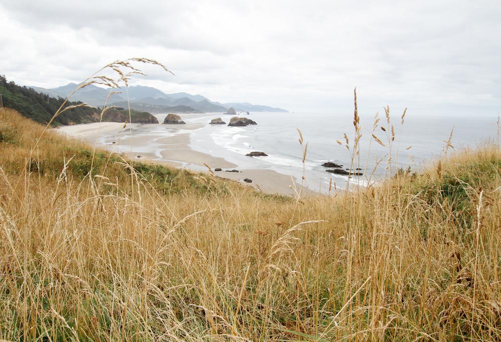 Oregon_2015-0738.jpg
