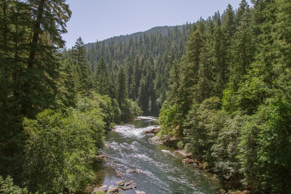 Oregon_2015-0042-3.jpg