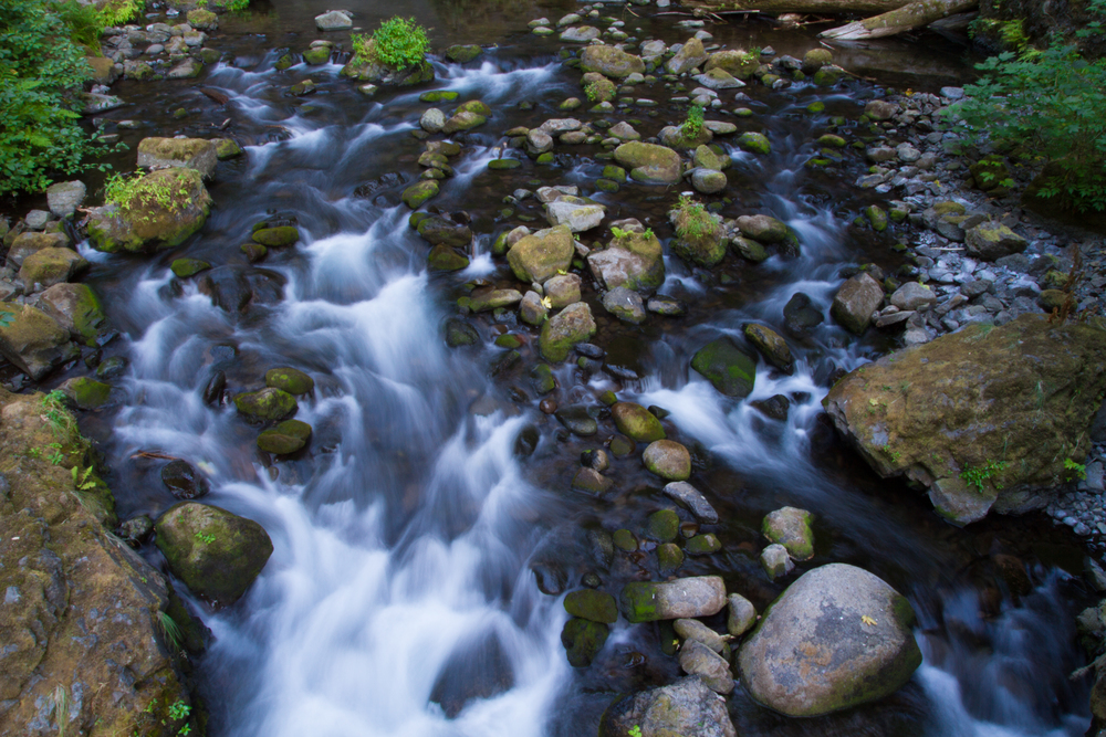 Oregon_2015-0281.jpg