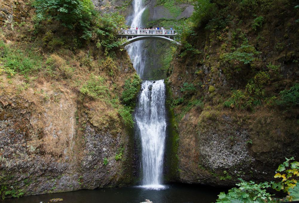 Oregon_2015-0425.jpg