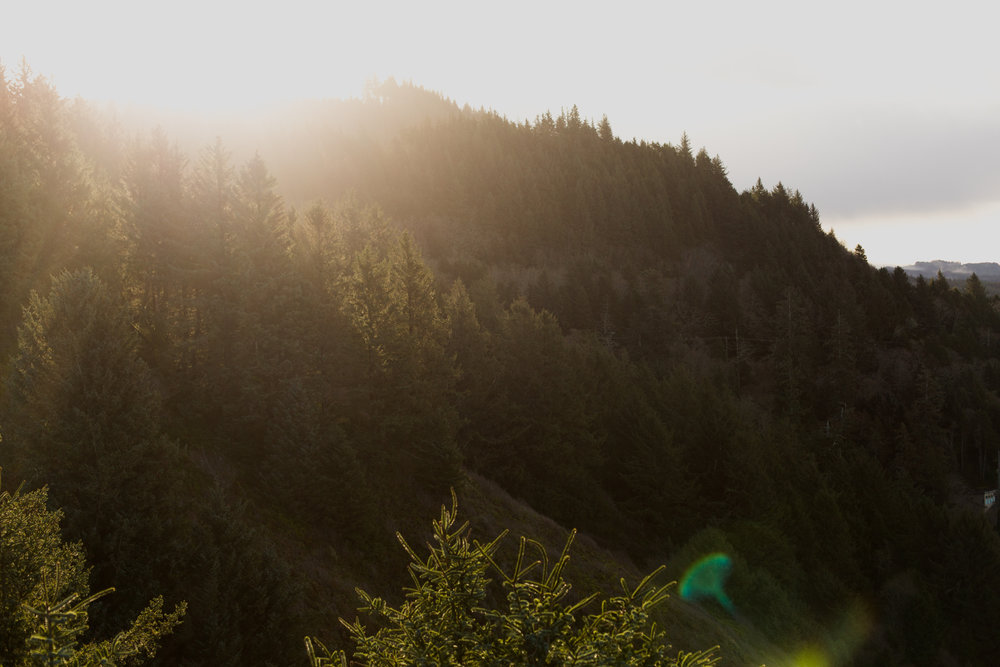 Oregon-3154.jpg