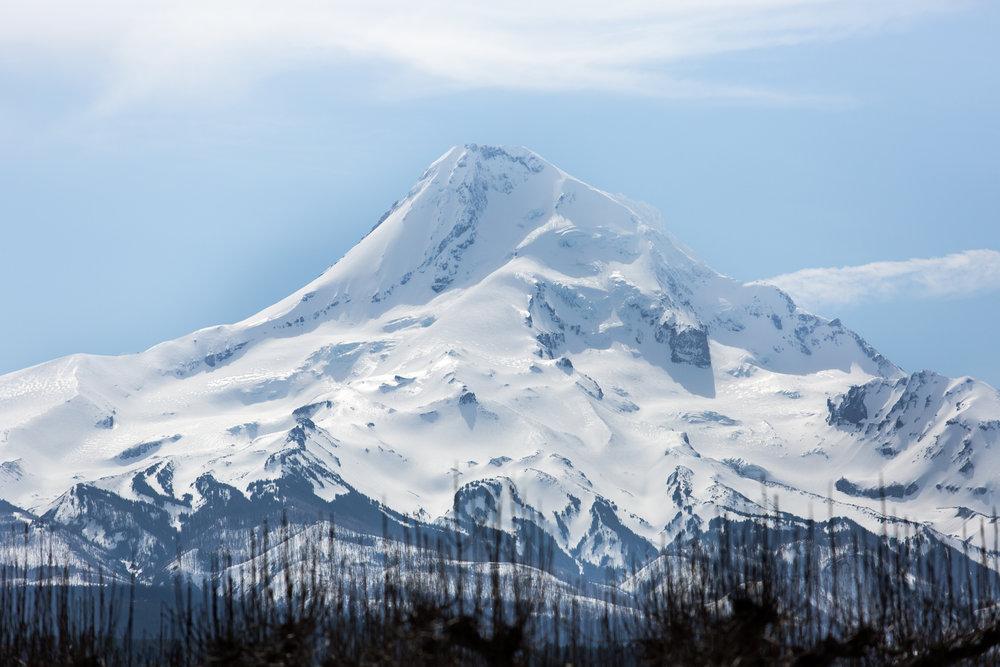 Oregon-4436.jpg