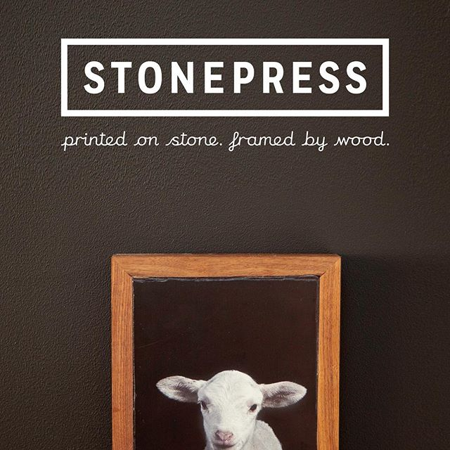A #babylamb portrait to kick off the weekend! #printsonstone #photoframe #photography #reclaimedwood