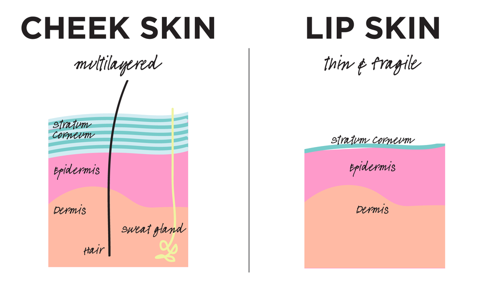 how to fix extremely dry lips