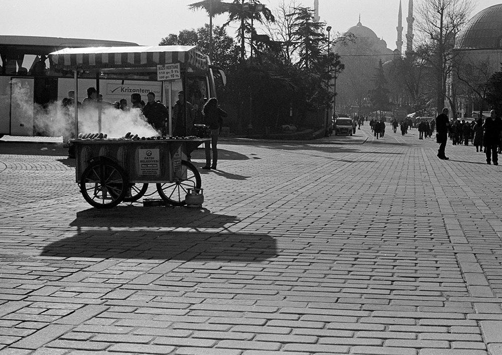turkey_22.jpg