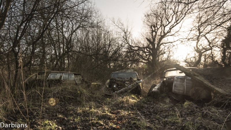 Car Graveyard Norfolk