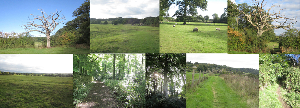 A variety of views on the walk from Moreton in Marsh to Batsford, to Bourton on the Hill, to Sezincote.