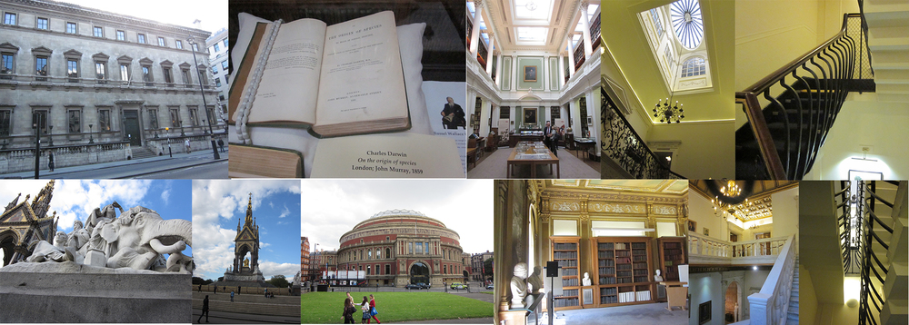(L-R, clockwise) The Reform Club, Origin of Species at Linnean Society, Linnean Society Library, the lantern ceiling at the Royal Overseas League, bowed railings at Royal Overseas League, another view of the bowed railings/crinoline staircase, the Royal Society stairwell, the Royal Society library, Royal Albert Hall across from Hyde Park, the Albert Memorial in Hyde Park, detail of the Albert Memorial