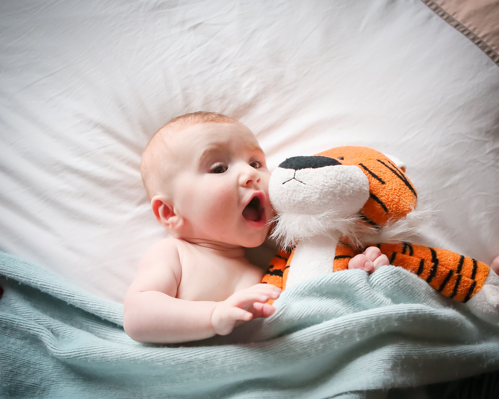 baby-with-stuffed-tiger