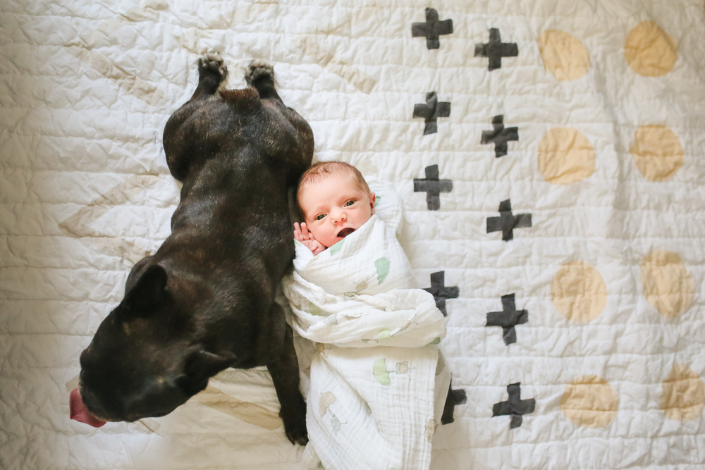 baby and fur best friend