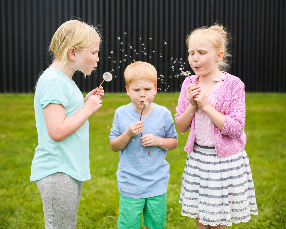children blowing dandelion