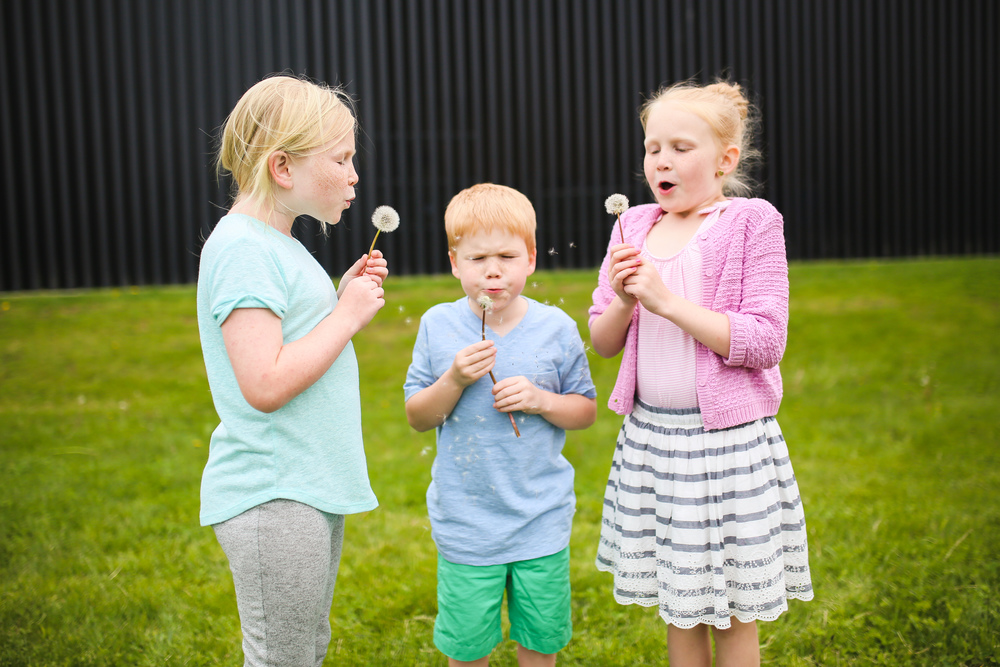 siblings blowing dandelion