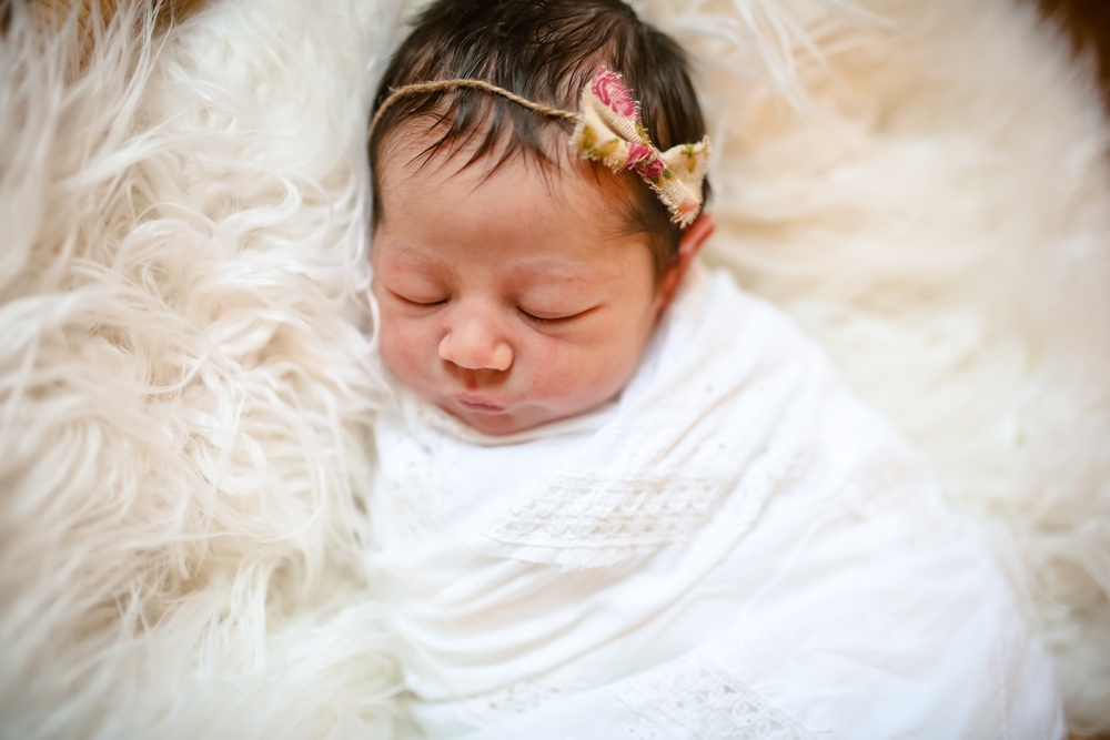 jenny-grimm-chicago-newborn-photographer