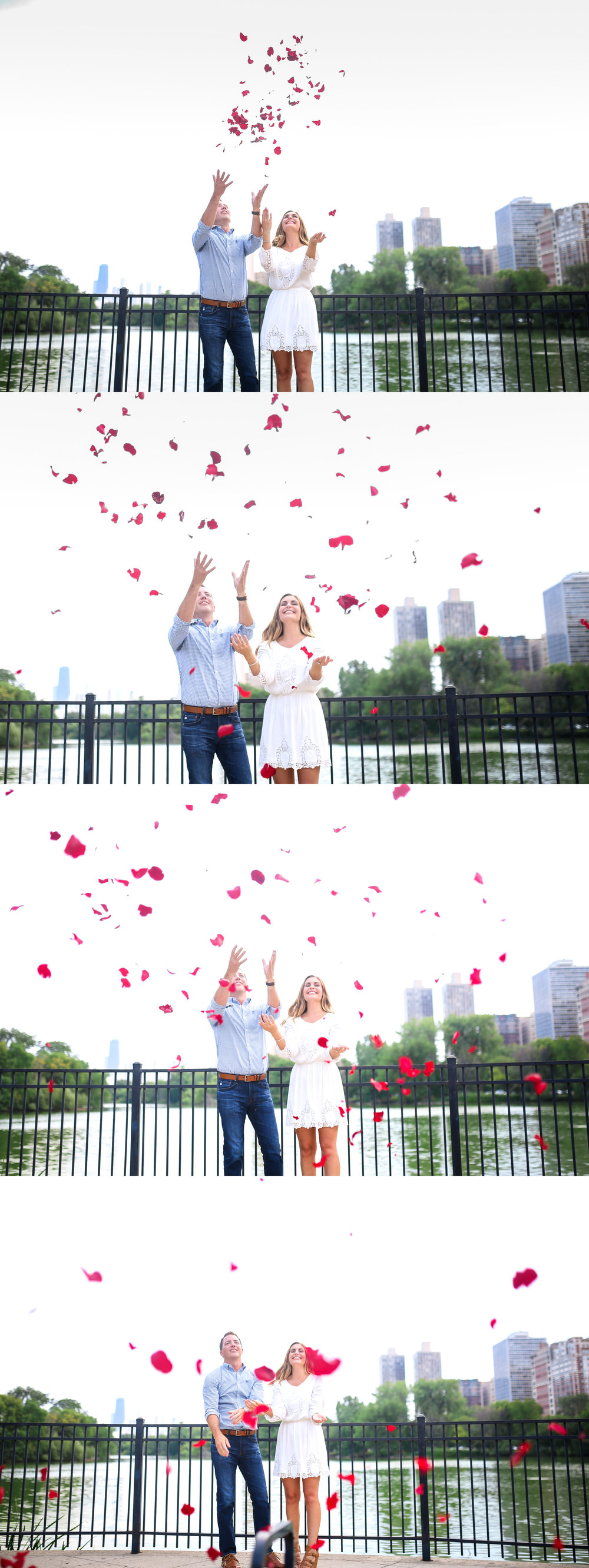 chicago engagement proposal