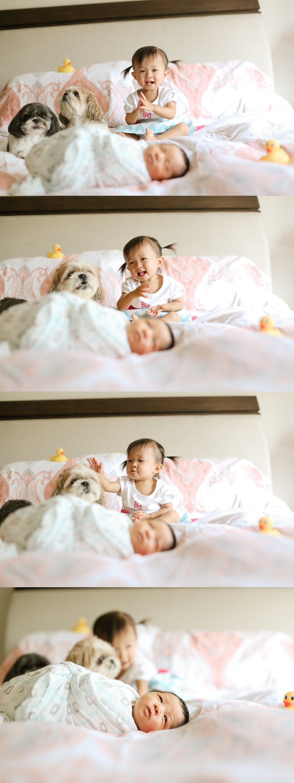 chicago newborn lifestyle photographer jenny grimm