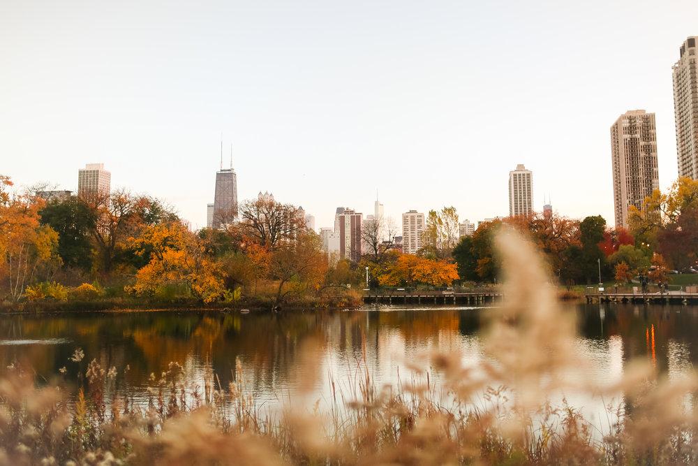 jenny grimm chicago lifestyle photographer