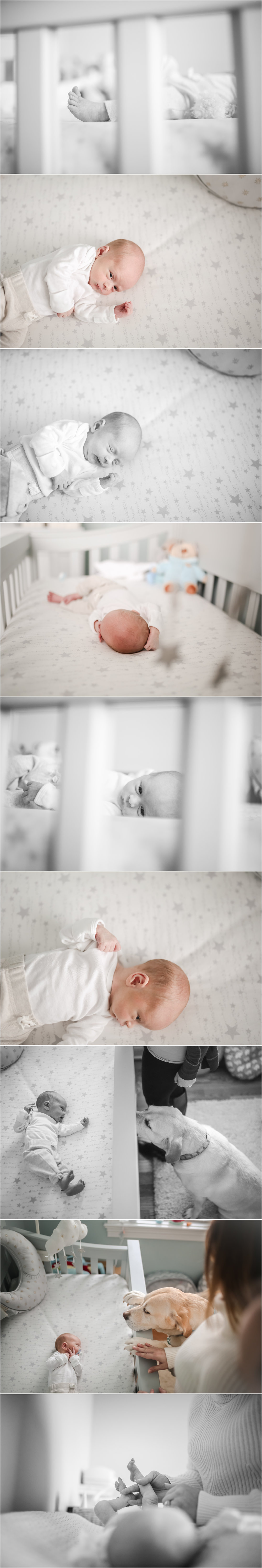 jenny grimm photography chicago newborn lifestyle photographer