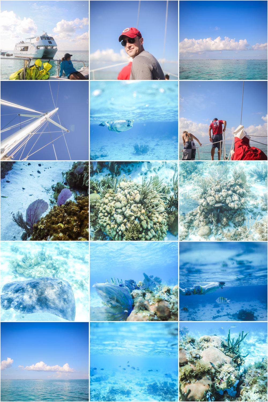 stingraycity 4 underwater photographer jenny grimm blog 1.jpg