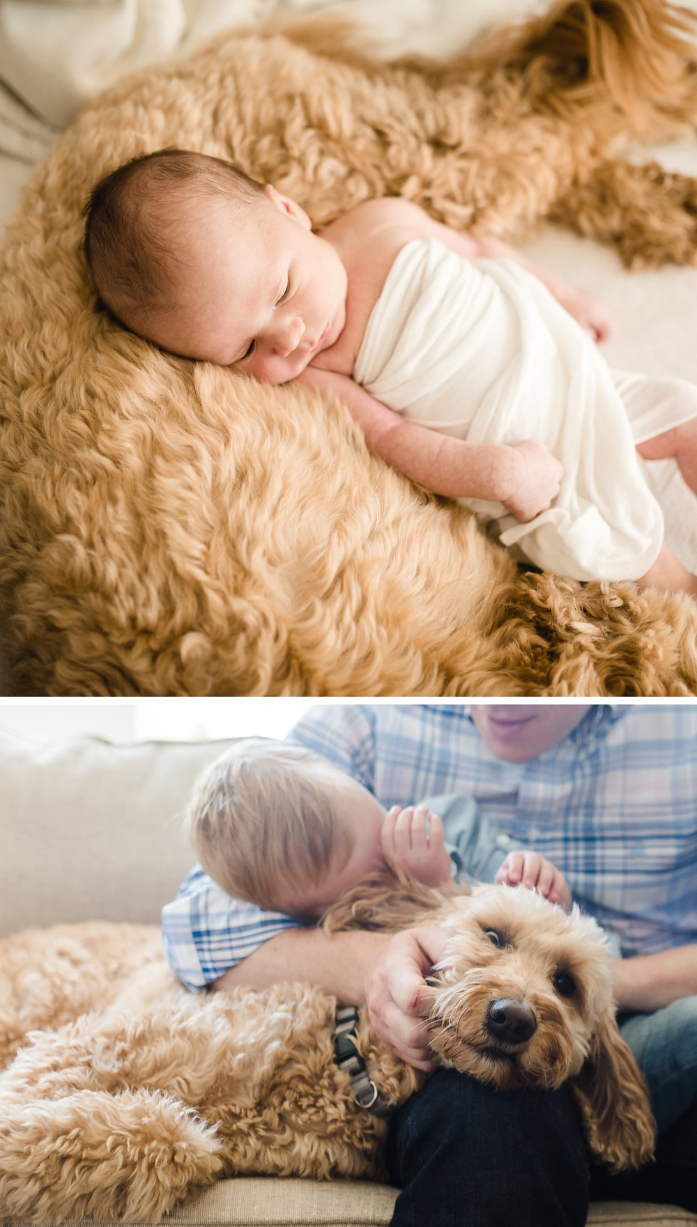 chicago-newborn-modern-lifestyle-photographer-jenny-grimm-photography_0003.jpg