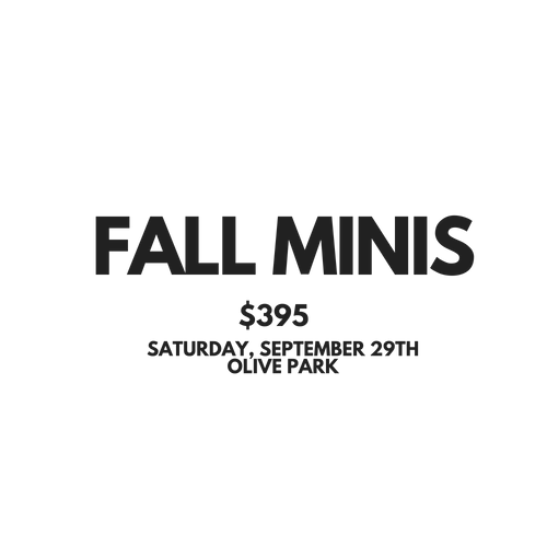 FALL MINIS 2018 session graphic.png