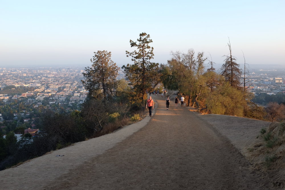 Griffith Park. Pic by Magdalena Wielopolski ©