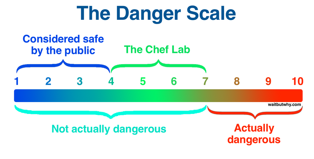 This is taken from the  Wait But Why post  referenced earlier. As the author explains, 'chefs' like Elon Musk, whom we revere as extreme risk-takers, are not actually taking on levels of risk that are truly dangerous. The rest of us are just so risk-averse that their behaviour seems crazy to us.