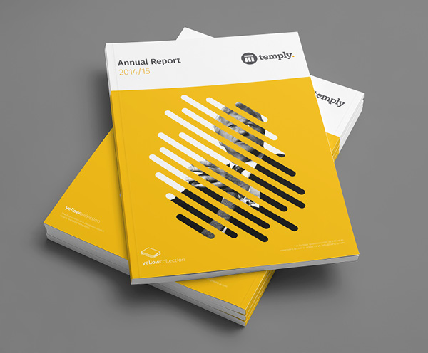 Annual Report  Temply