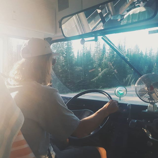 The best time for driving is during sunset or sunrise - the roads are nearly empty, there's wildlife galore and you get the best photos. 👌🌄 #treibholzdesigns #vanlifeexplorers #vanliferevolution