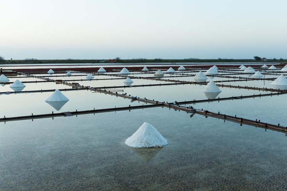 Salt Investment Options.jpg